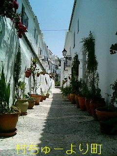 スペイン 白い村 フリヒリアナ