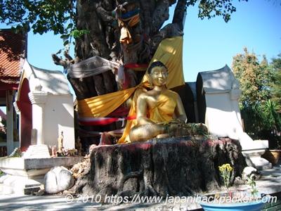 チェンライの仏像