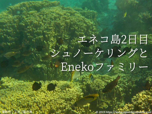 エネコ島のサンゴ