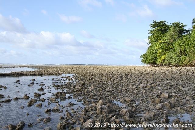 エネコ島の引き潮