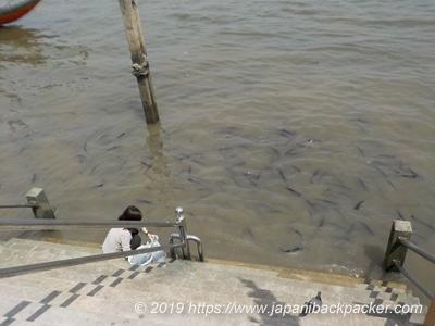 チャオプラヤ川