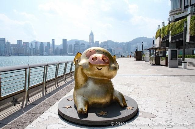 アベニュー・オブ・スターズの豚