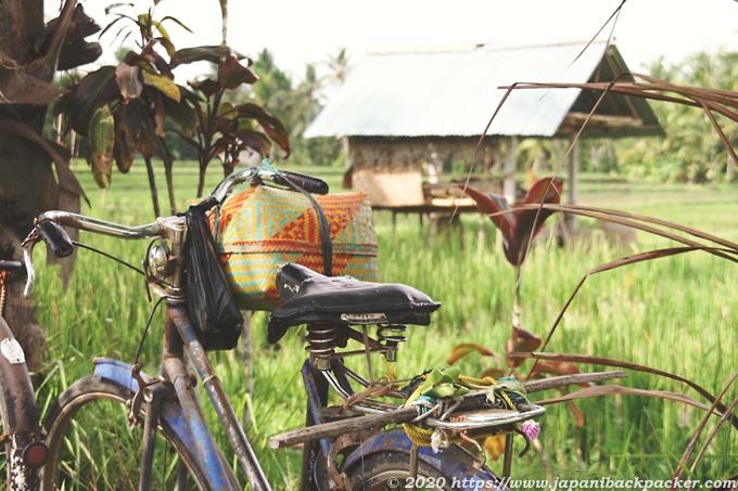 ウブド 田んぼ道の自転車
