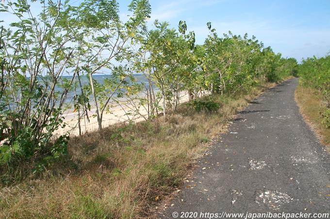 マングローブの森へ行く海辺の道