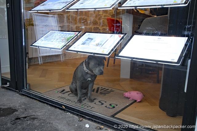 パリの飼い犬