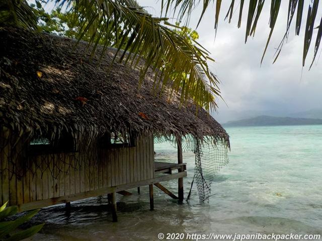 ミクロネシア ブラックコーラル島