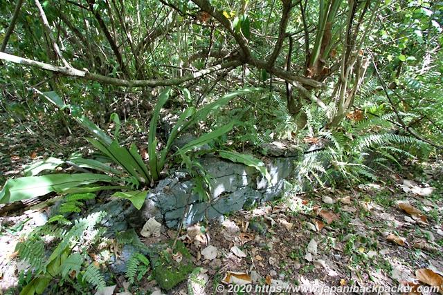 ランガル島 日本軍の居住跡 基礎工事