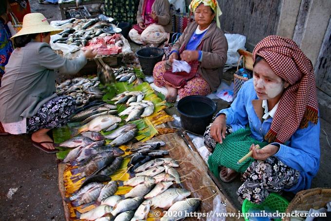 ニャウンシュエ ミンガラー市場 魚屋