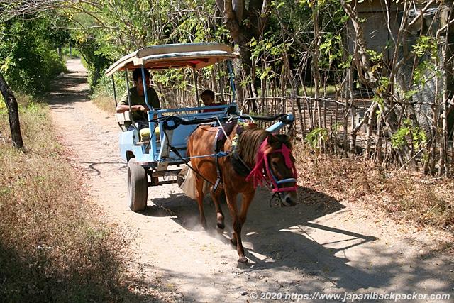 ギリメノ島の馬車