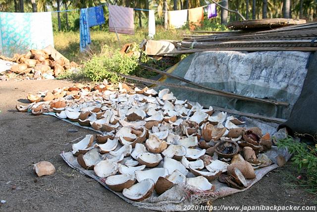 インドネシアのココナッツ