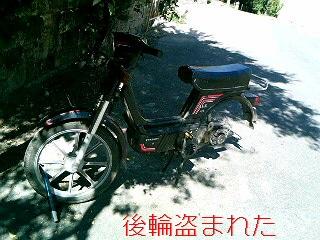 セゴビア バイク